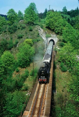Die 95 027 am 18. Mai 1985 mit einem Sonderzug auf dem Kreuztal-Viadukt. Gut einen Kilometer weiter erreicht der Zug Rübeland (Foto: Detlef Winkler)