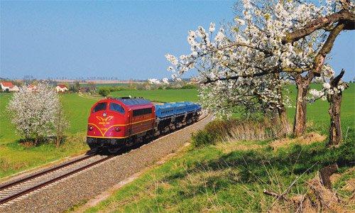 Die Obstblüte im Altenburger Land bei Saara bildete am 19. April 2011 einen schönen Rahmen für die My 1149 mit ihrem kurzen DBV 94278 von Glauchau nach Celle. Foto: Ralph Lohse